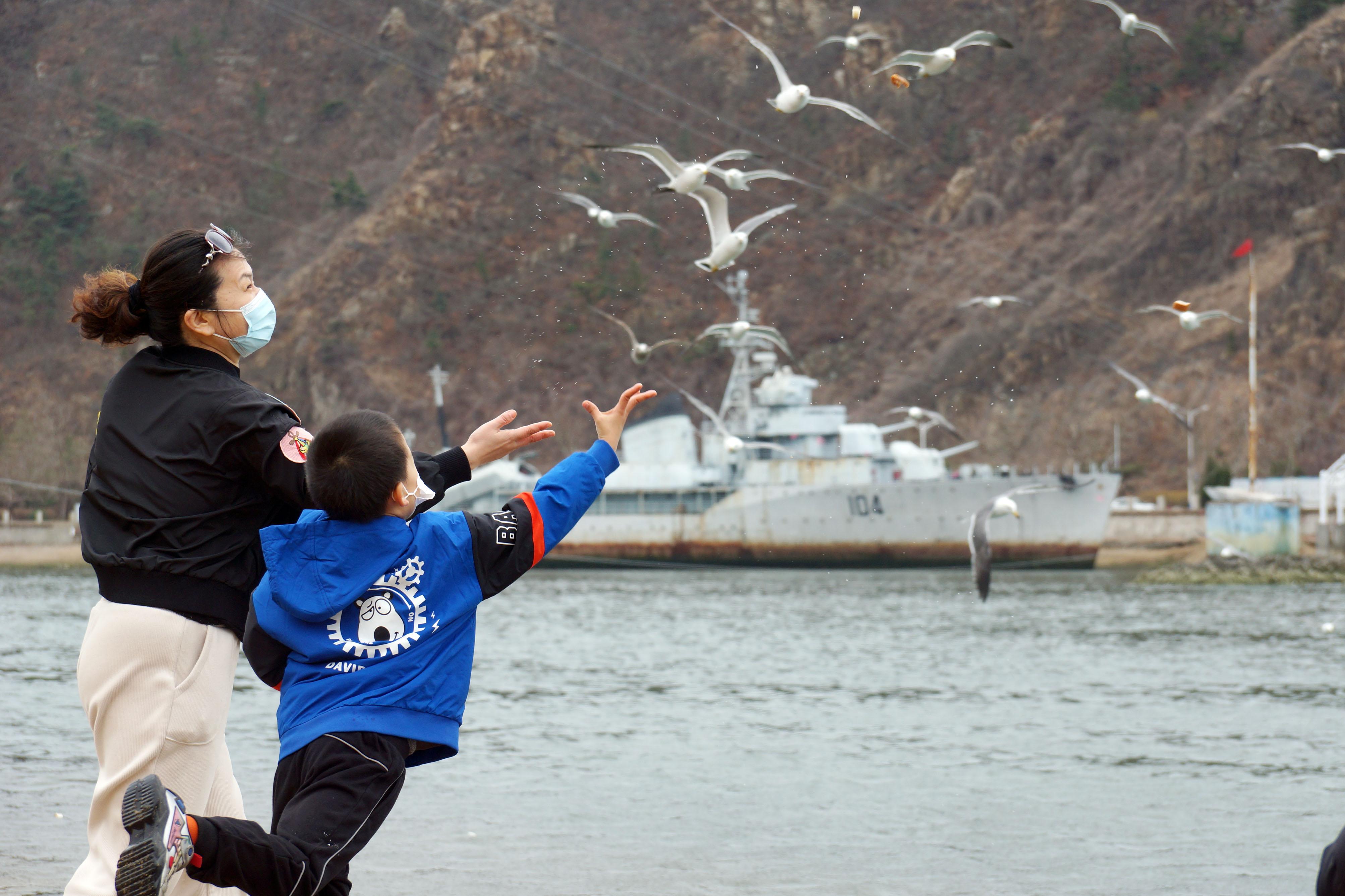 清明小長假首日,數十名小朋友在家長帶領下近距離觀察、餵食海鳥。培養海洋環保意識,感受人與自然和諧共生。(記者宋偉攝)