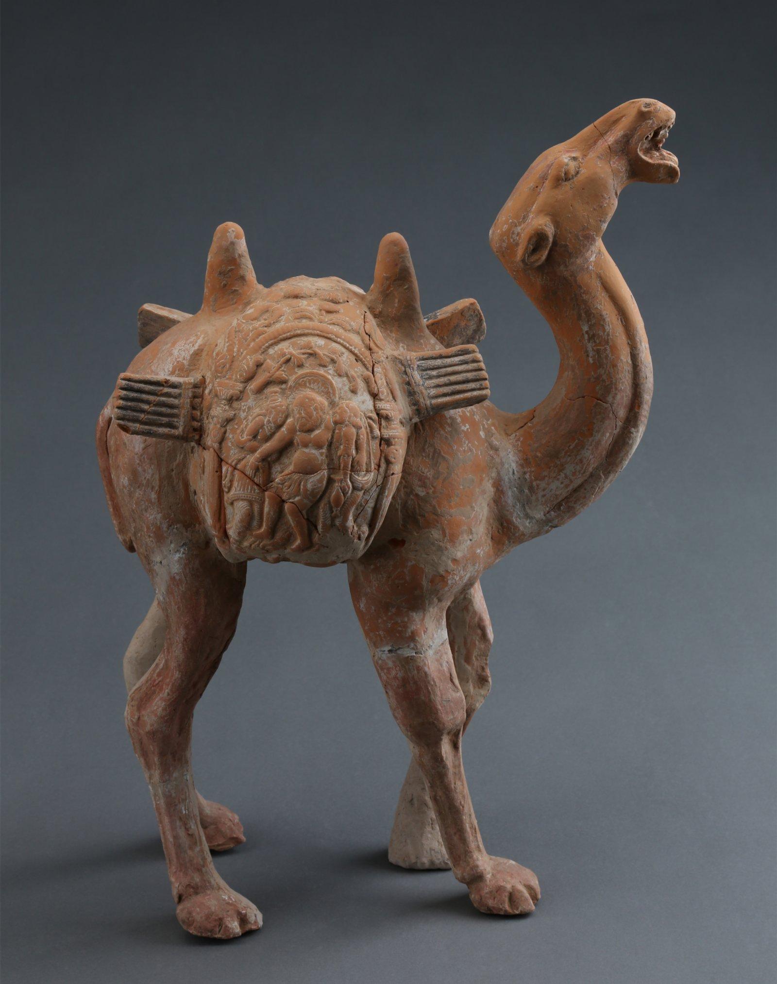 豆盧整墓出土的罕見酒神馱囊駱駝。(受訪者供圖)
