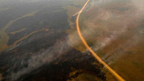 巴西世界最大濕地遭遇創紀錄大火