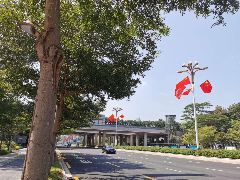 深圳市福田區道路邊插滿了國旗。(記者 胡永愛 攝)