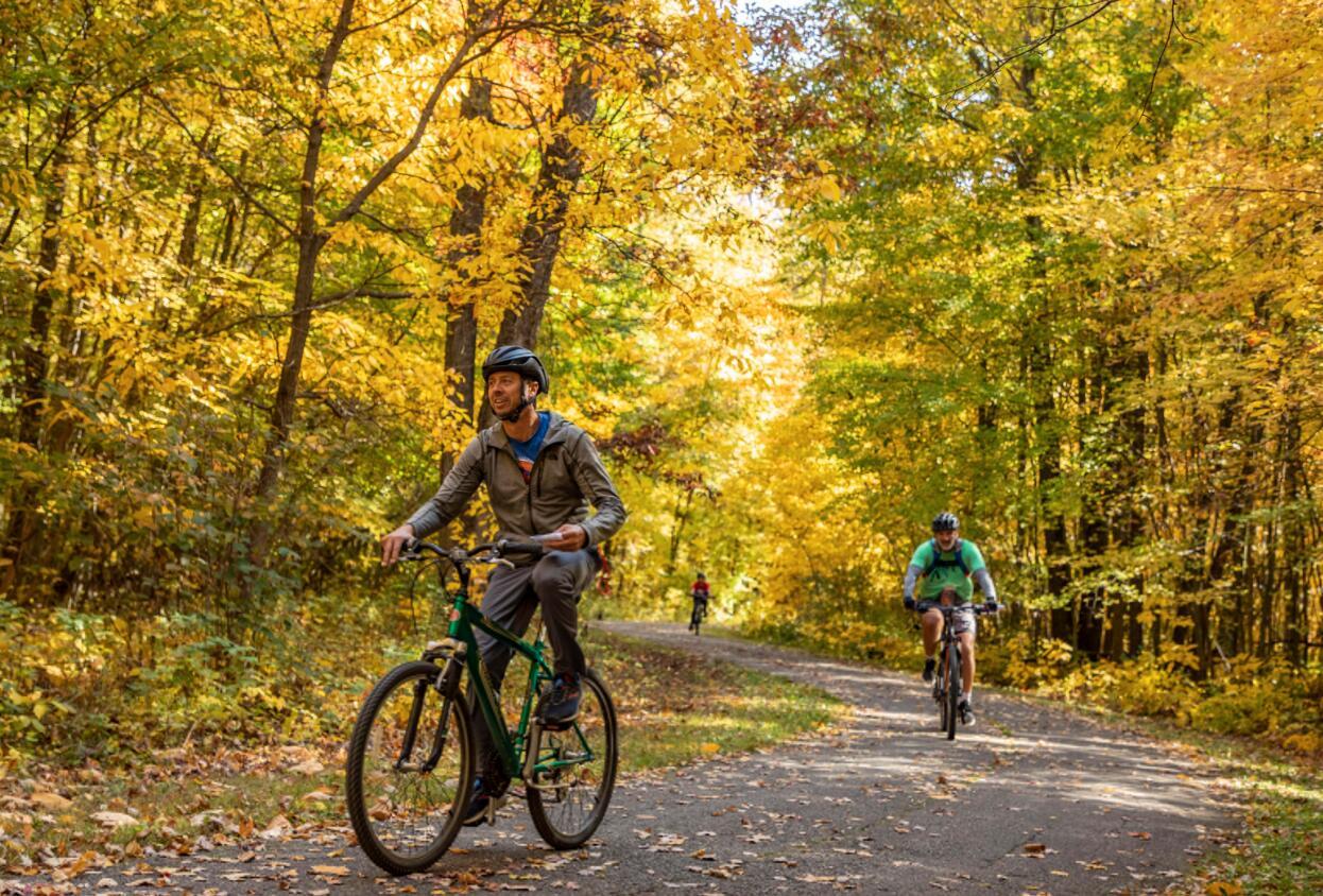 金秋十月,密歇根州東部秋意正濃,風景如畫。 10月11日,在美國密歇根州東部利文斯頓縣,人們在騎行途中欣賞秋景。(新華社)