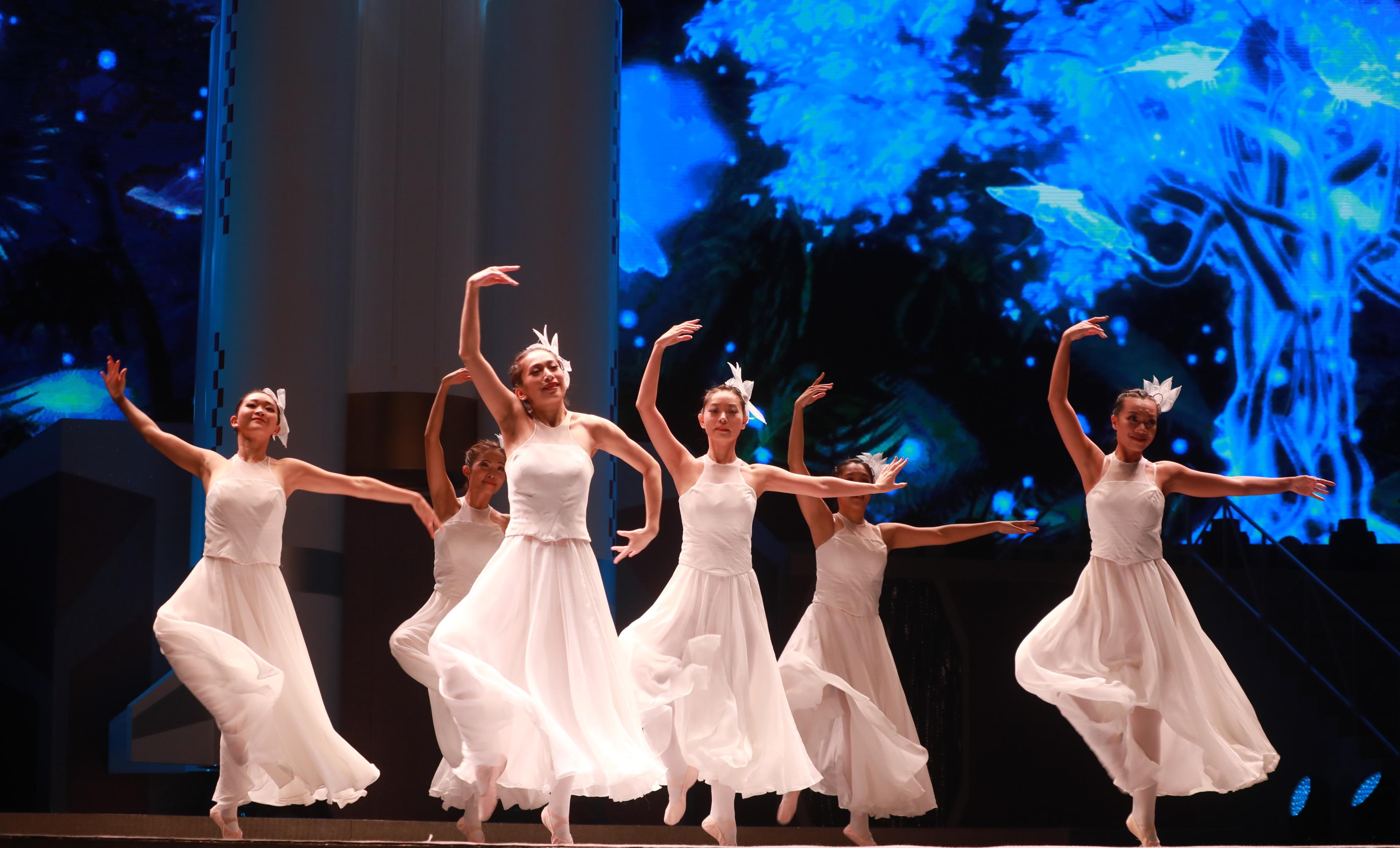 多位知名紅星及不同團體支持參與演出,以音樂、舞蹈、歌唱等形式為觀眾獻上精彩表演,為香港注入正能量。(大公文匯全媒體記者攝)