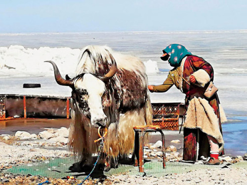 【大地遊走】中國四大河流行:黃河篇青海湖
