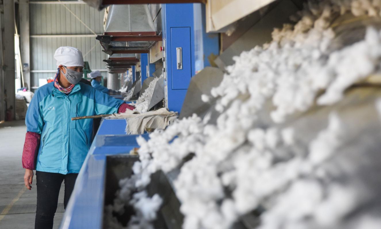 10月17日,在新疆瑪納斯縣樂土驛鎮軋花廠,工人在軋花車間忙碌。(新華社)