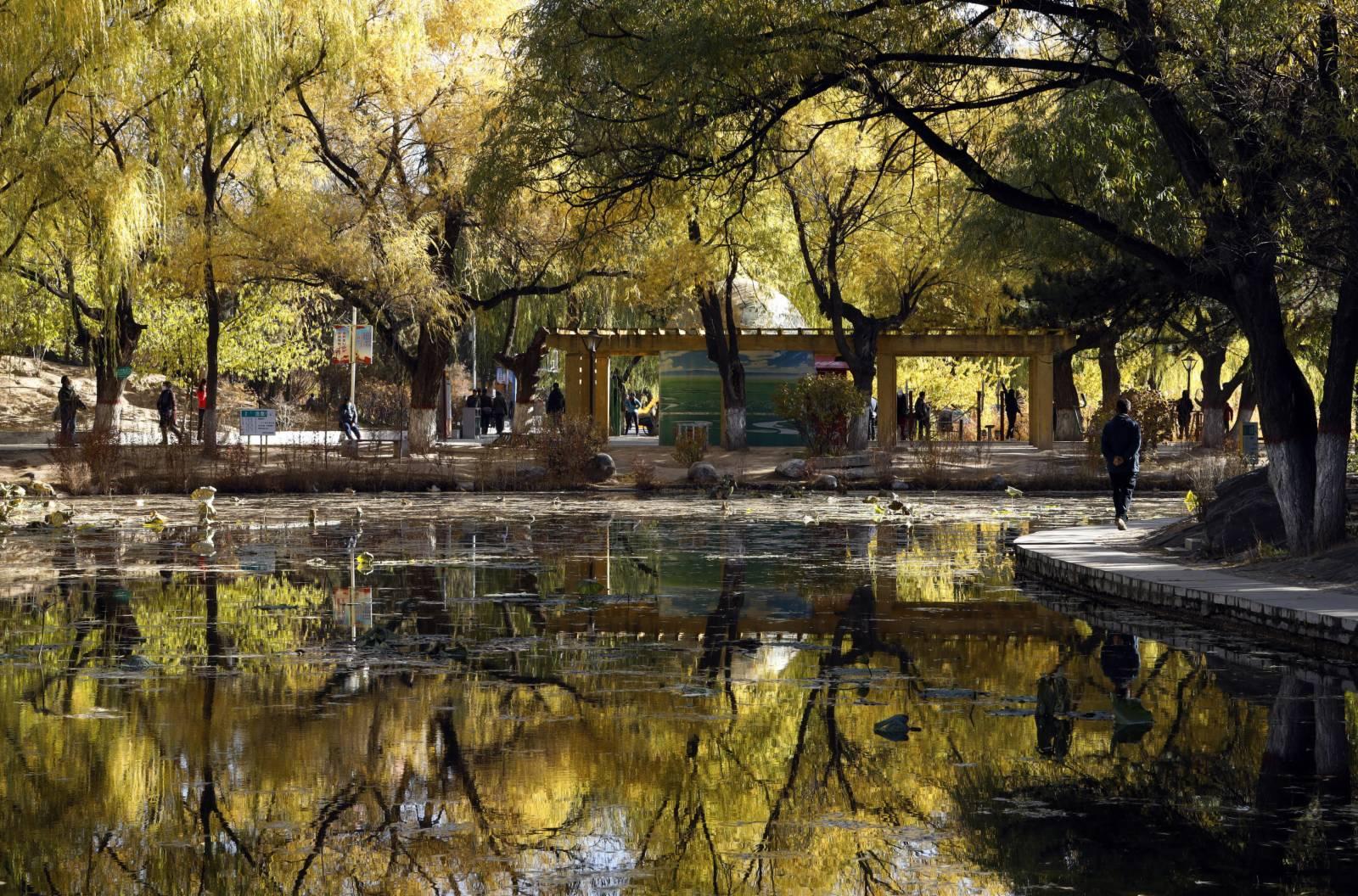 10月23日,霜降時節,呼和浩特市滿都海公園秋色濃郁,美景滿目。(新華社)