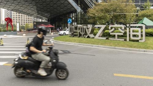 香港能從「螞蟻」的成長中學到什麼