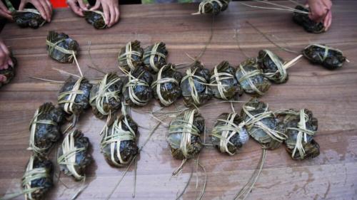 海關截獲1000公斤無衞生證明大閘蟹 食安中心正跟進