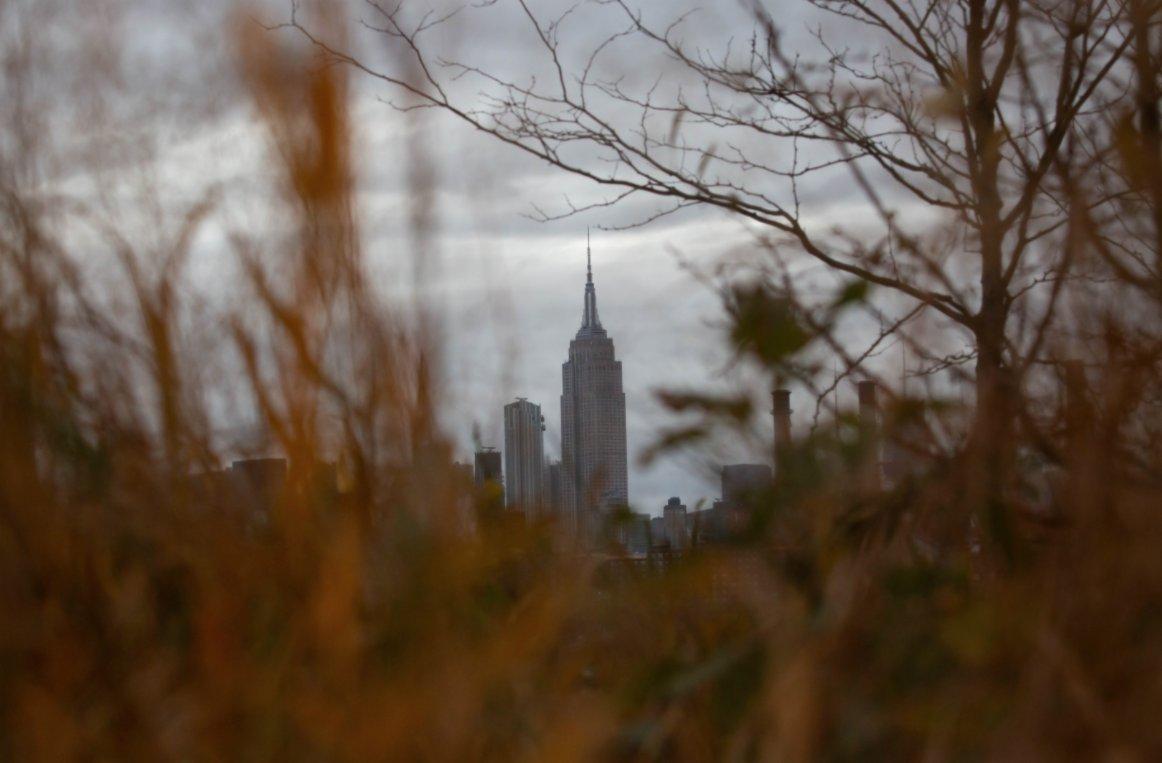 這是11月12日在美國紐約多米諾公園拍攝的帝國大廈。(新華社)
