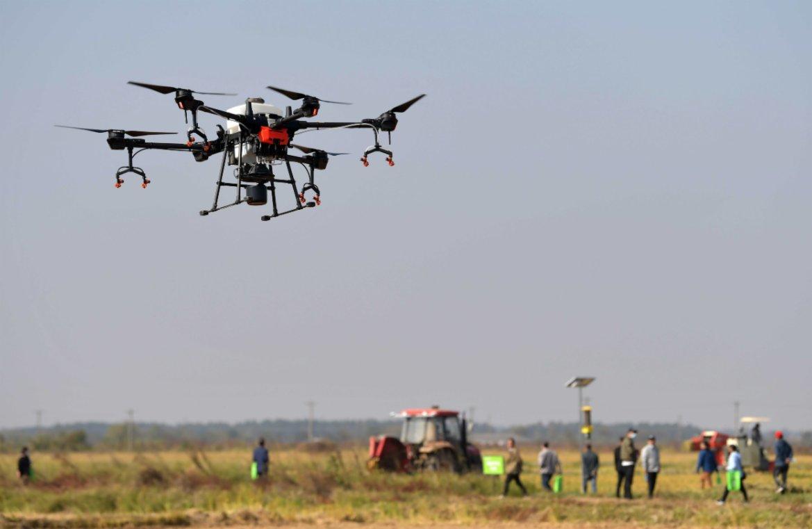 11月14日,在江西省南昌縣蔣巷鎮大田農社智慧農場,無人機植保設備在進行現場演示。(新華社)