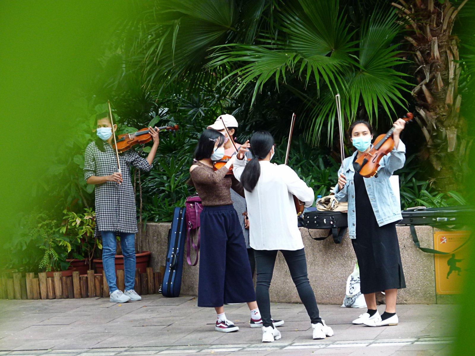 11月15日,外傭在尖沙咀九龍公園練習小提琴。(中新社)