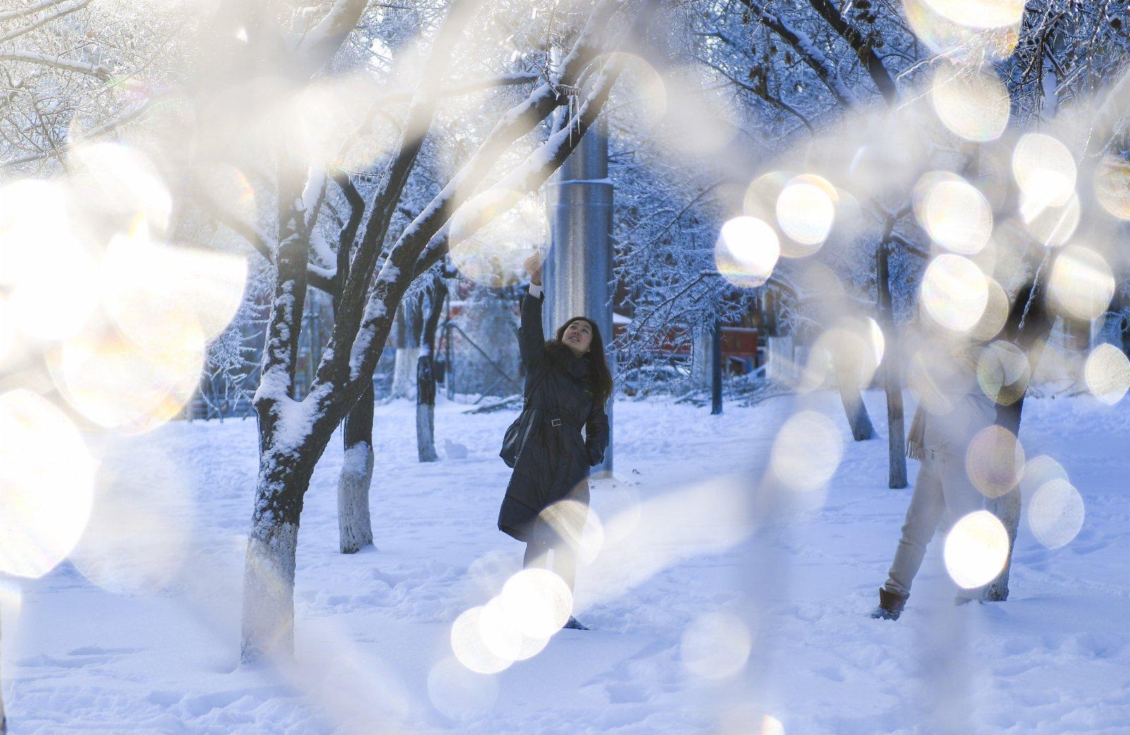 市民在長春市文化廣場欣賞雪景。