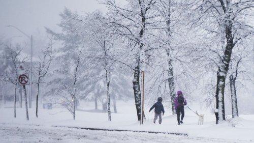 加拿大多倫多等地遭遇降雪天氣