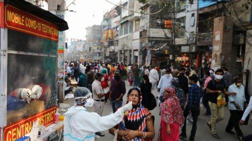 印度再多4.1萬人確診