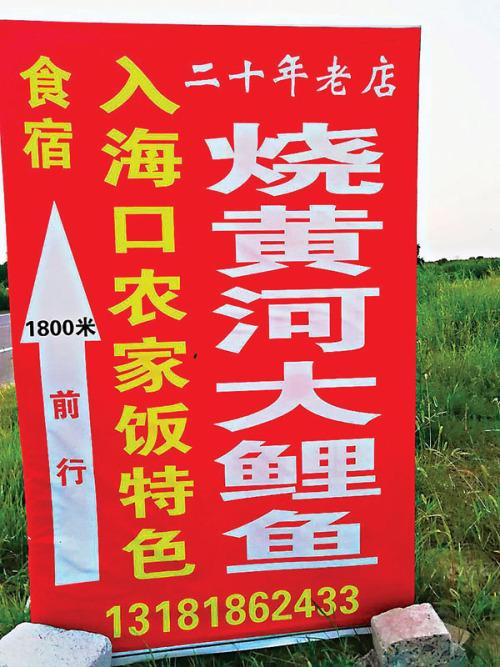 【大地遊走】中國四大河流行︰黃河篇黃河下游東營之三