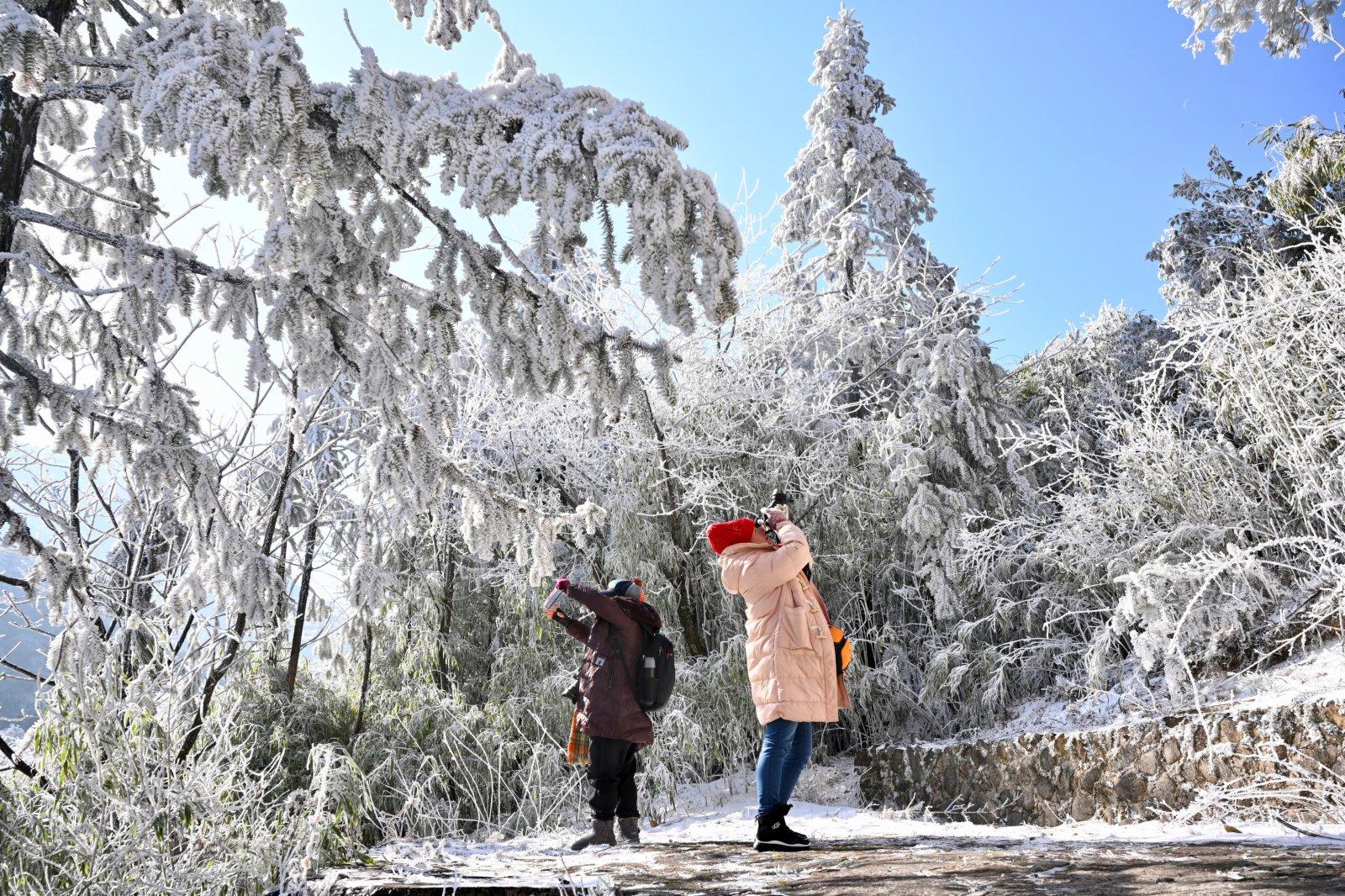1月8日,遊人在武夷山國家公園腹地桐木關附近拍攝雪景。