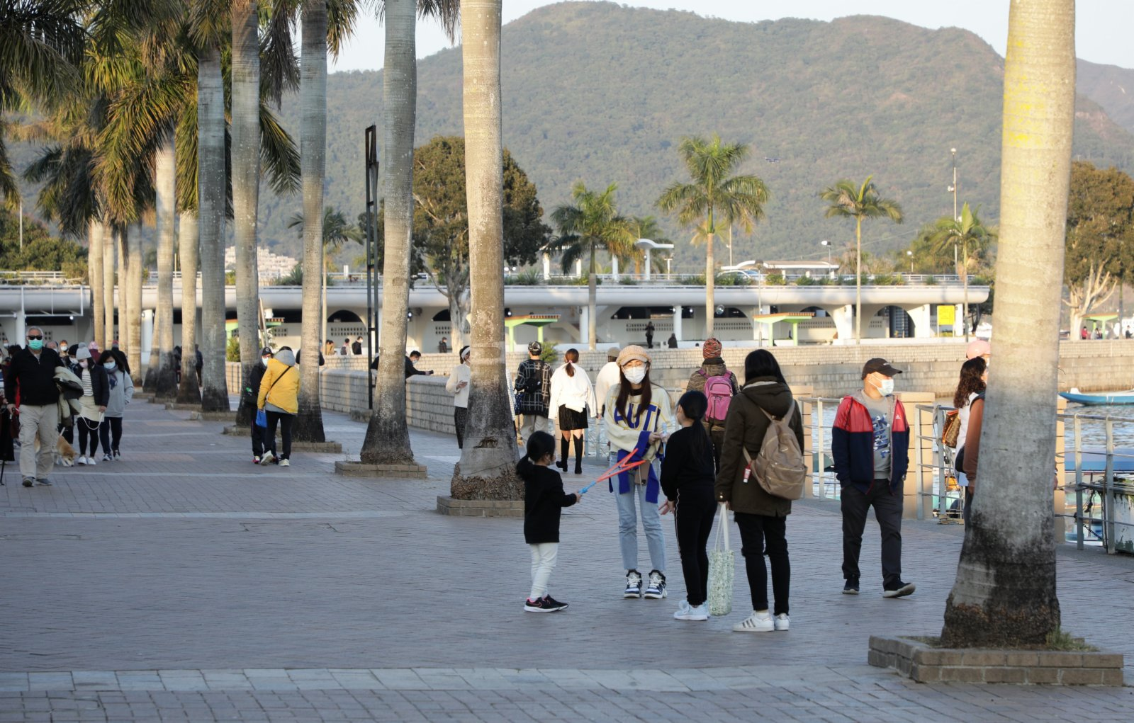 1月13日,香港天氣寒冷,有市民在西貢碼頭放風箏舒展身心。(香港中通社圖片)