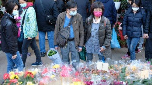 香港市民提早到花墟選購年花