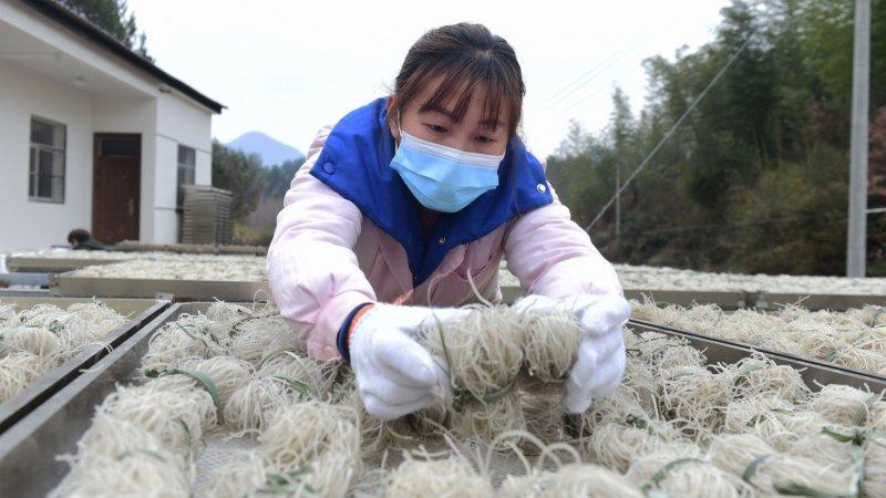 安徽黃山:粉絲加工助增收