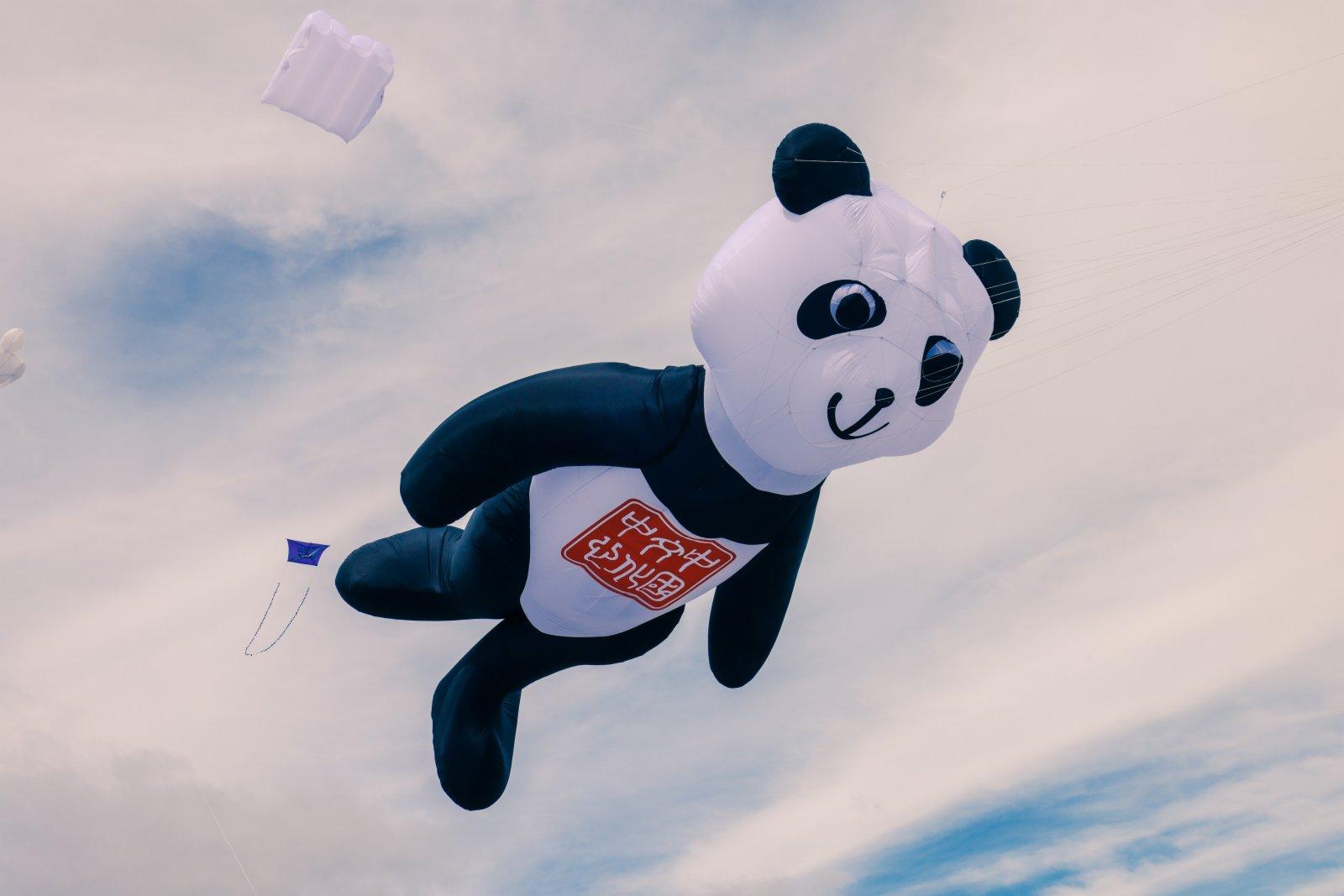 這是2月6日在新西蘭惠靈頓北部小鎮奧塔基海灘上拍攝的大熊貓形象風箏。該風箏由惠靈頓中國文化中心推出。