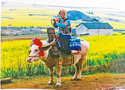 【心窗常開】牛年展望 享受耕作