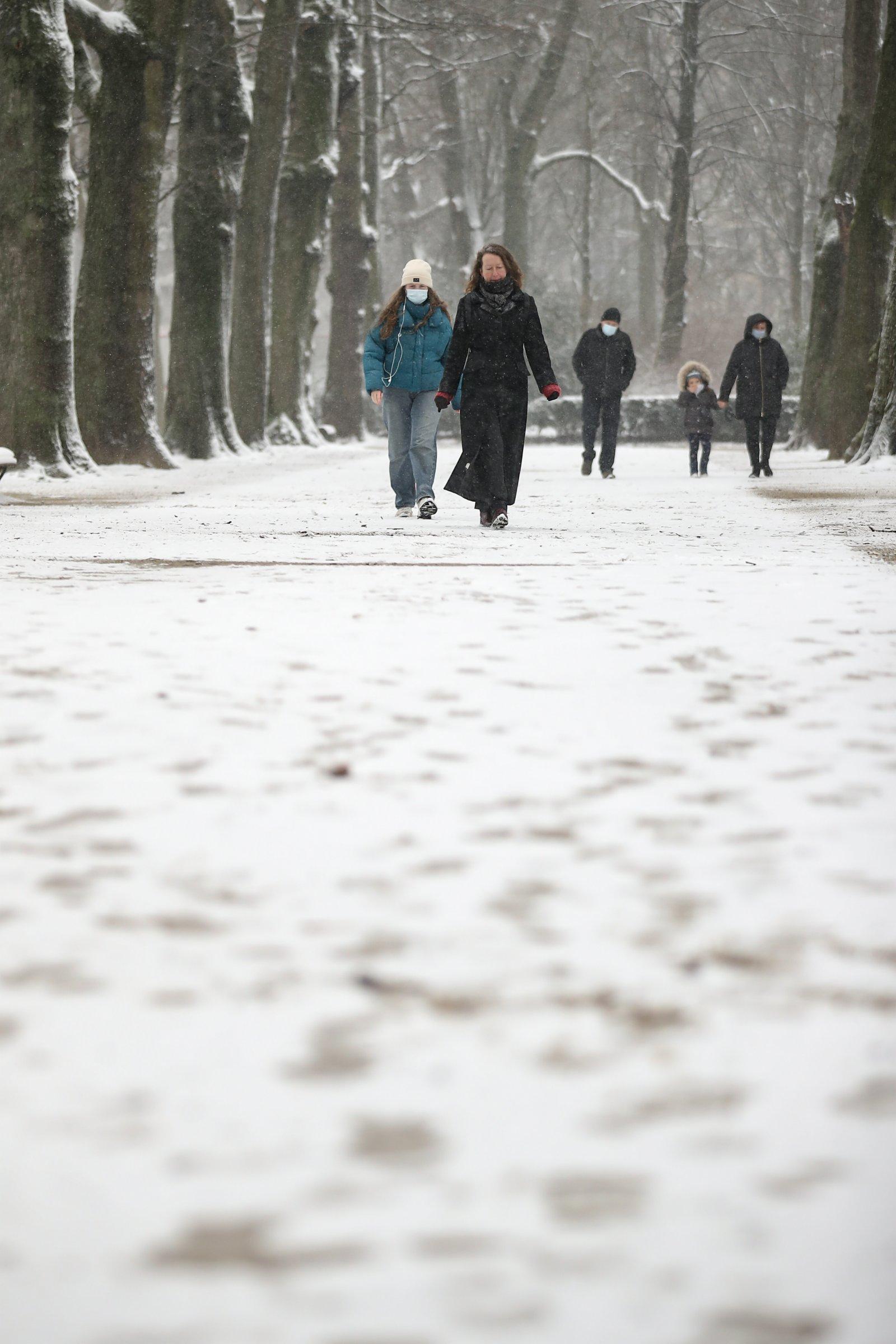 人們在比利時布魯塞爾的五十週年紀念公園賞雪。