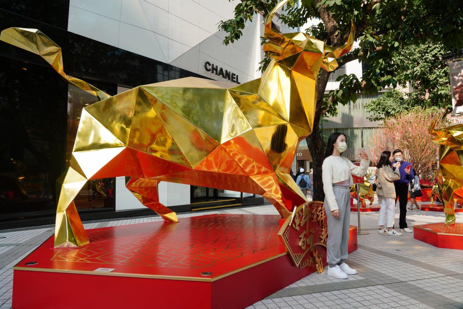 銅鑼灣街頭的「金牛呈祥」裝置在陽光下熠熠生輝。