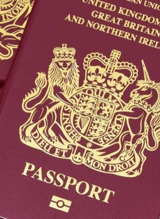 12港人BNO移民 玩抗爭被英遣返