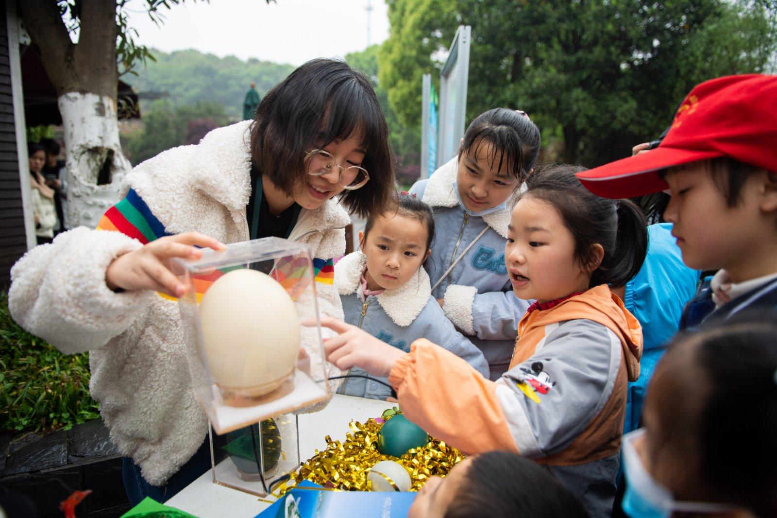 4月3日,長沙生態動物園工作人員(左一)給孩子們介紹蛋殼標本。(新華社)