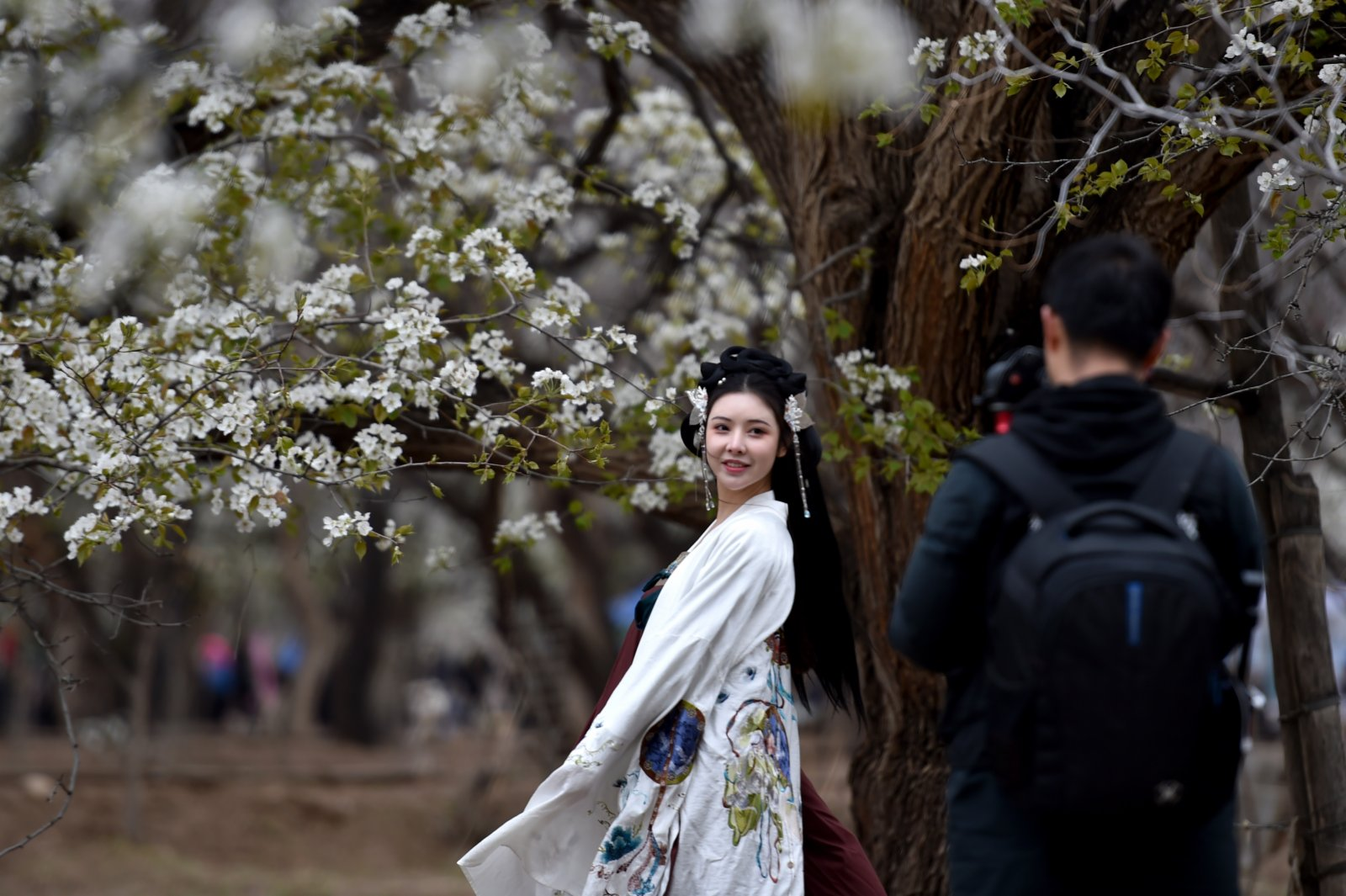 4月3日,遊客在中衛市南長灘村梨花園內拍照留影。(新華社)