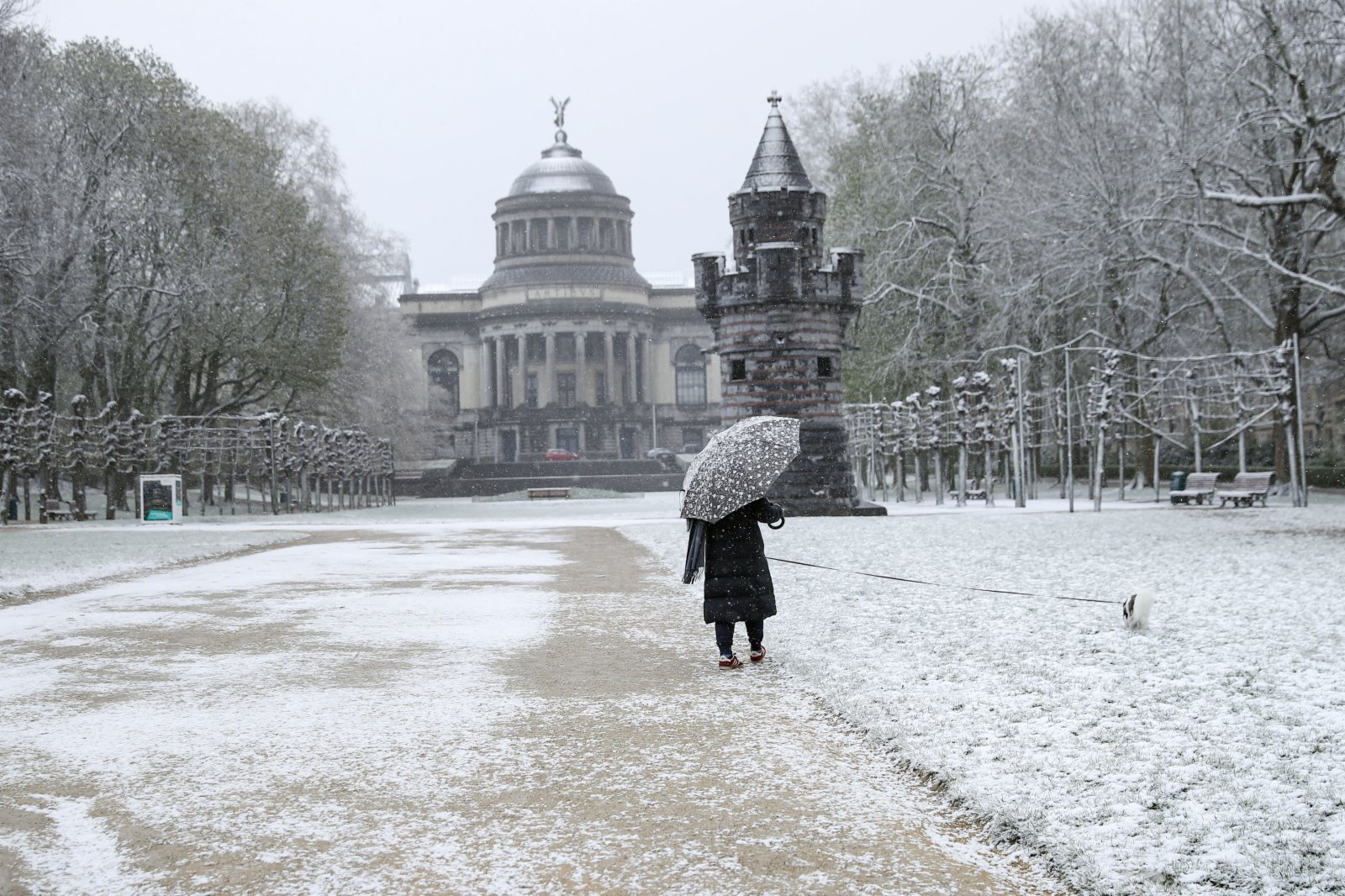 4月6日,一名市民在比利時布魯塞爾五十周年紀念公園冒雪遛狗。