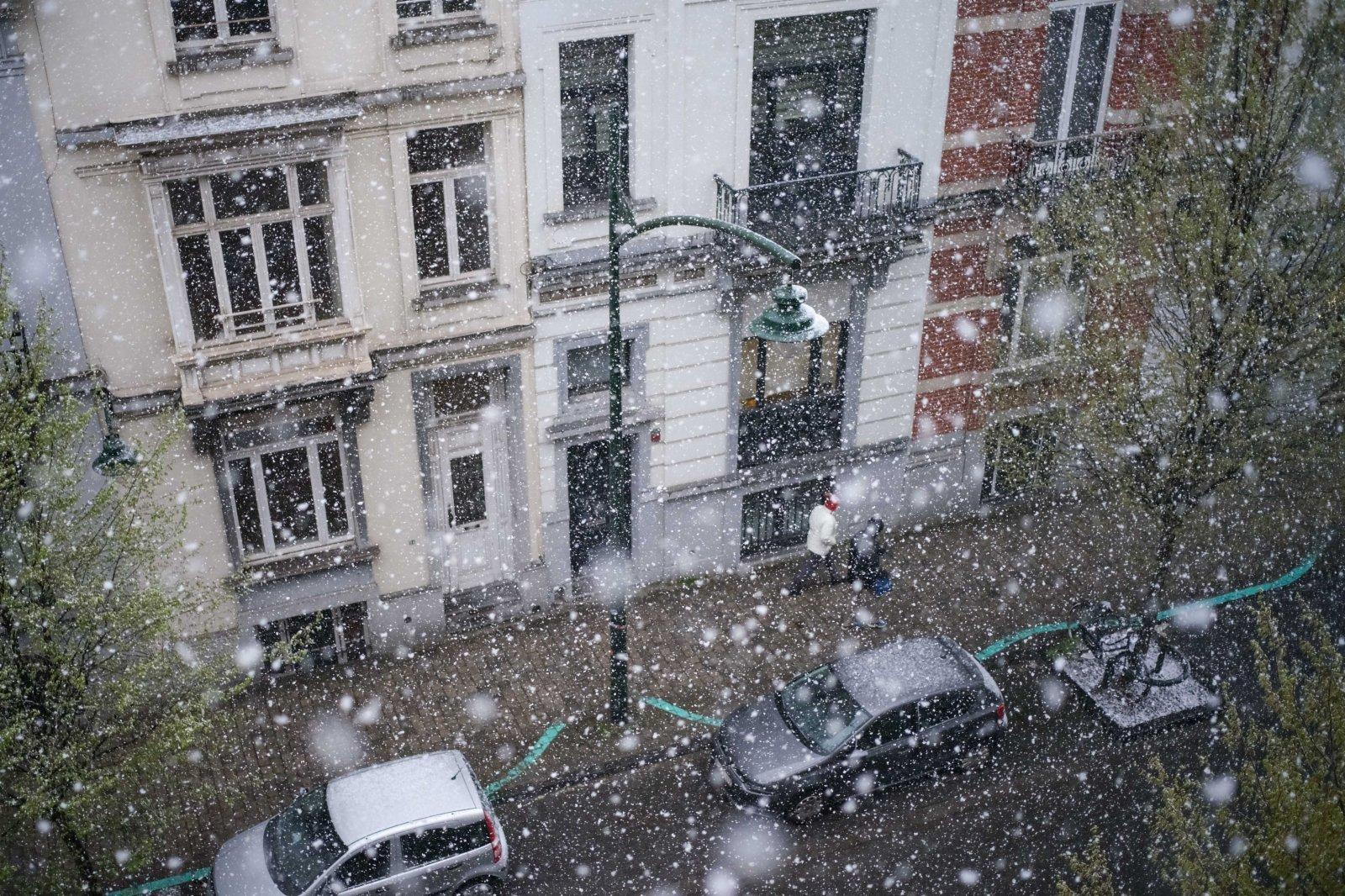 這是4月5日在比利時布魯塞爾拍攝的雪景。