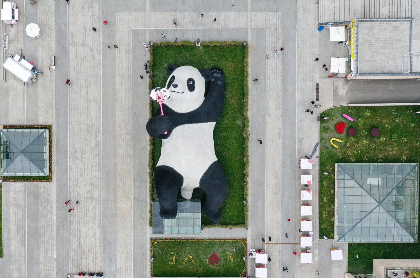 這是4月7日在四川省都江堰市仰天窩廣場拍攝的「自拍熊貓」雕塑(無人機照片)。(新華社)