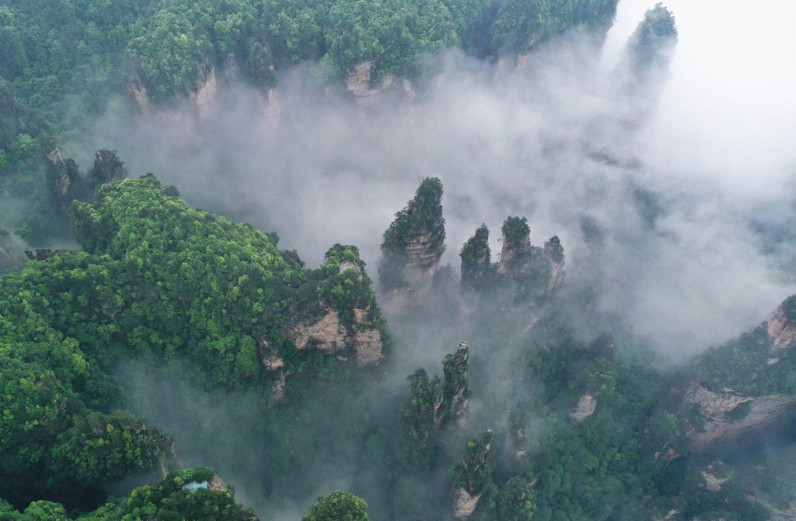 這是5月14日拍攝的張家界武陵源景區峰林雲海景觀(無人機照片)。