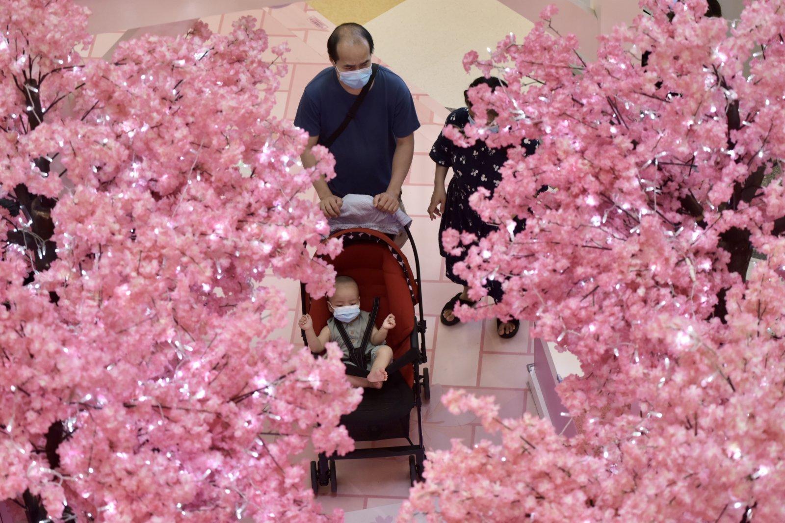 圖為香港市民在花叢中走過。