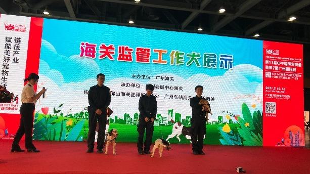 如何從香港攜寵物入境內地?廣州海關詳解