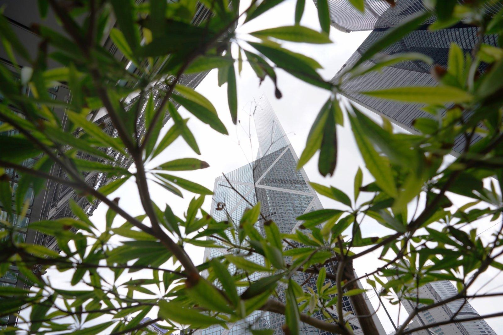 這是5月14日拍攝的香港中環摩天大樓。