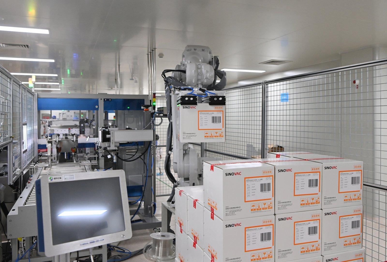 6月1日,位於北京市大興區的北京科興中維生物技術有限公司新冠疫苗包裝生產線上,5月中旬投用的碼垛機械人正在作業。據公司工作人員介紹,未來還將有至少6條包裝生產線投用碼垛機械人,以提高作業效率。  (香港中通社)