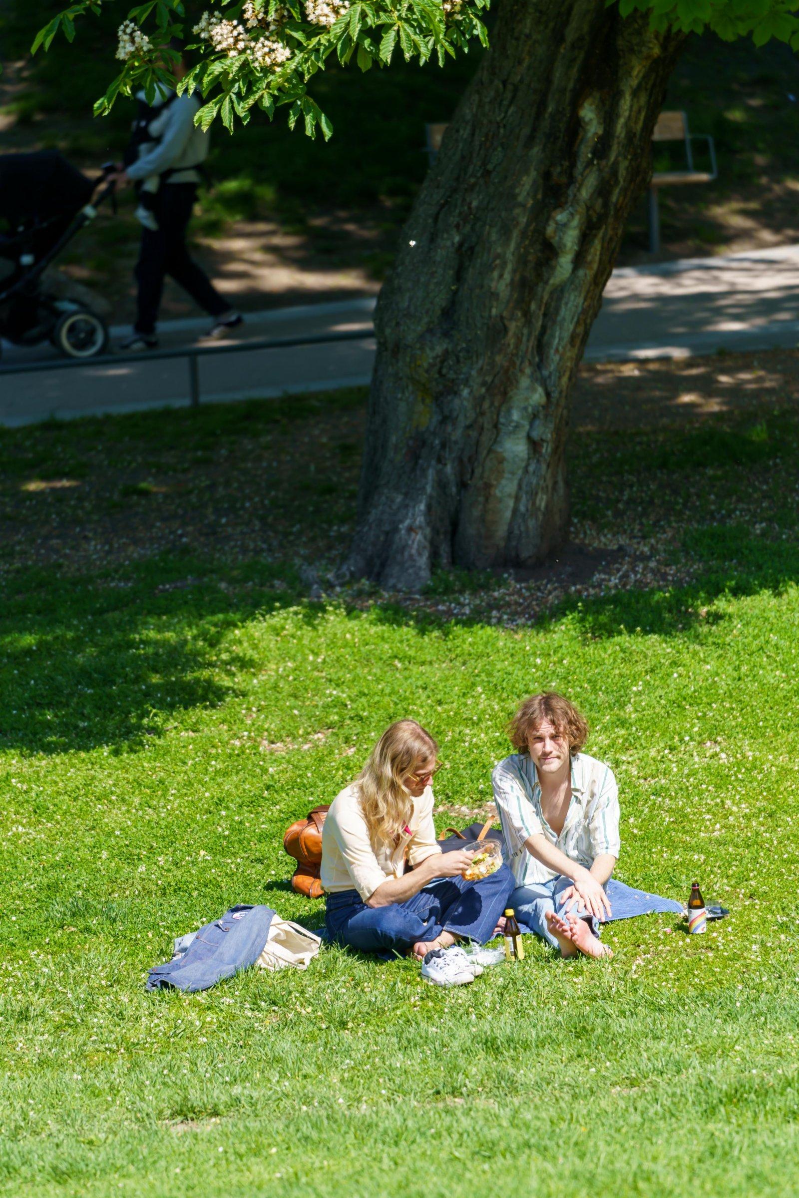 6月1日,人們在瑞典斯德哥爾摩一處公園的草坪上休閒。(新華社)