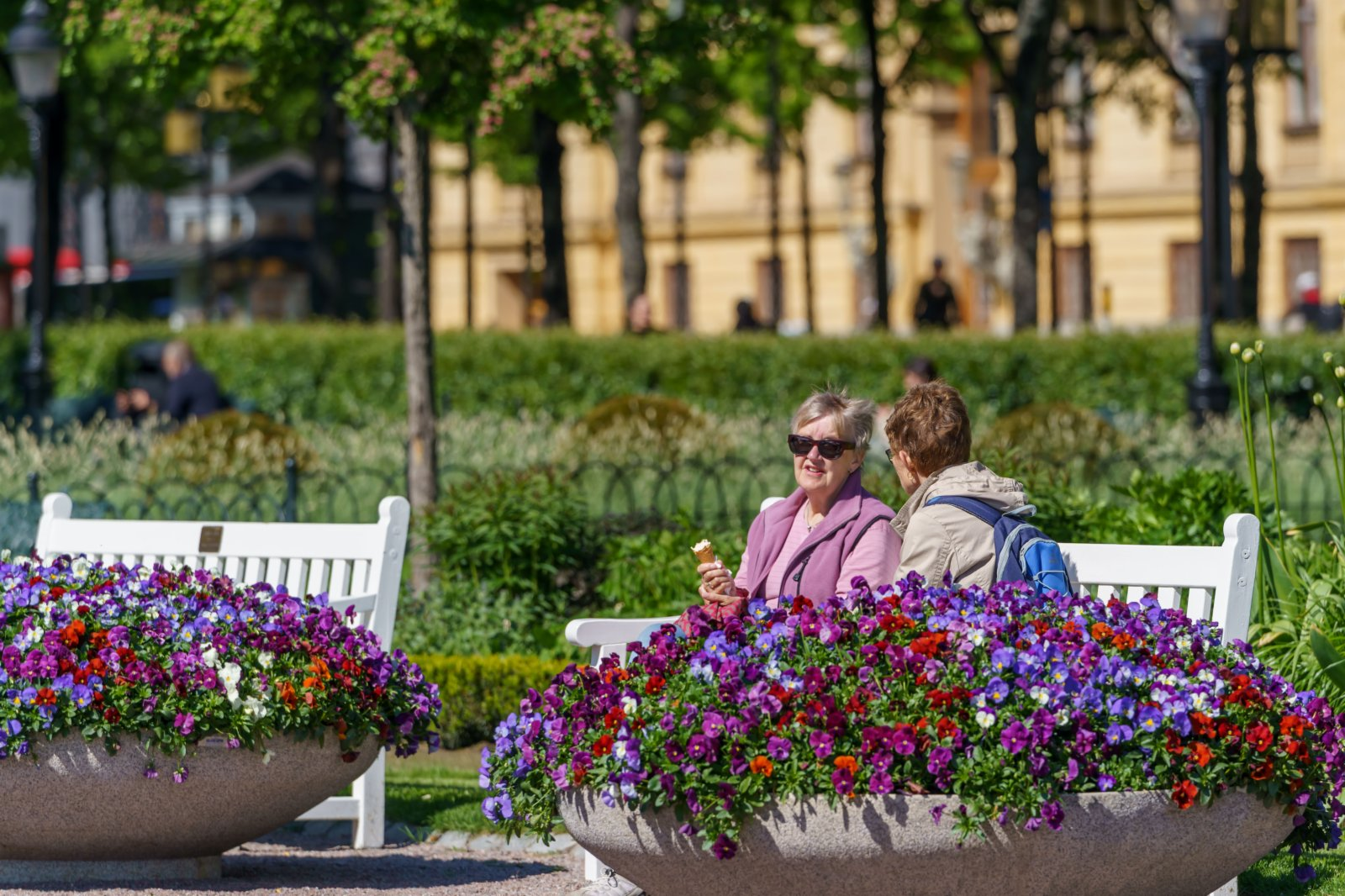 6月1日,人們在瑞典斯德哥爾摩一處公園的長椅上交談。(新華社)