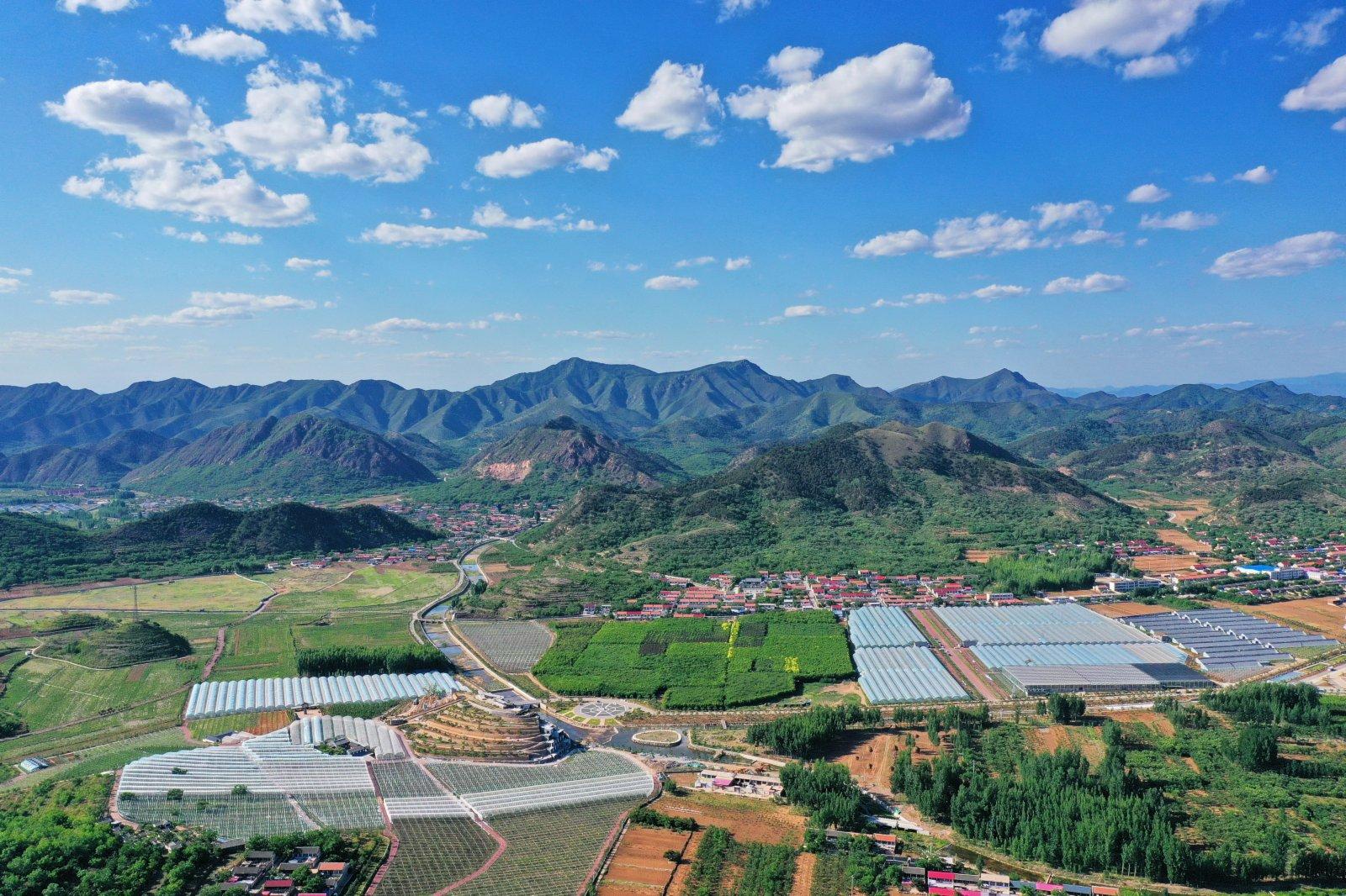 這是6月3日拍攝的河北省遷西縣花鄉果巷田園綜合體(無人機照片)。(新華社)