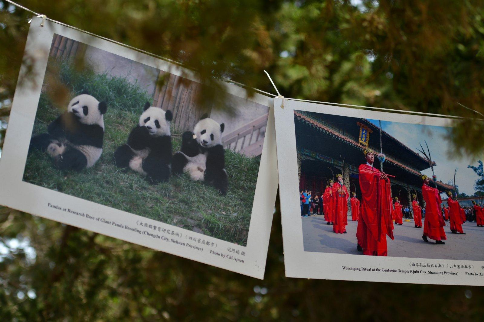 6月7日在馬耳他桑塔露琪亞市拍攝的「美麗中國」攝影圖片展現場。(新華社)