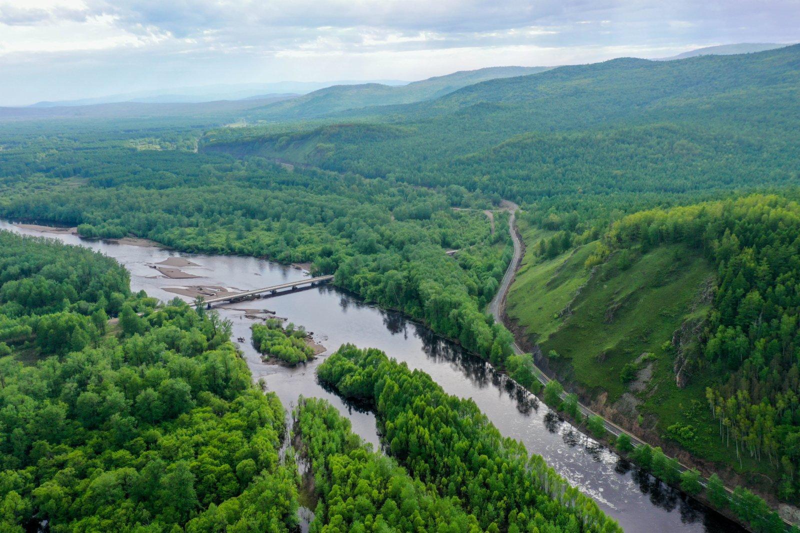 6月8日在內蒙古根河源國家濕地公園拍攝的景象(無人機照片)(新華社)