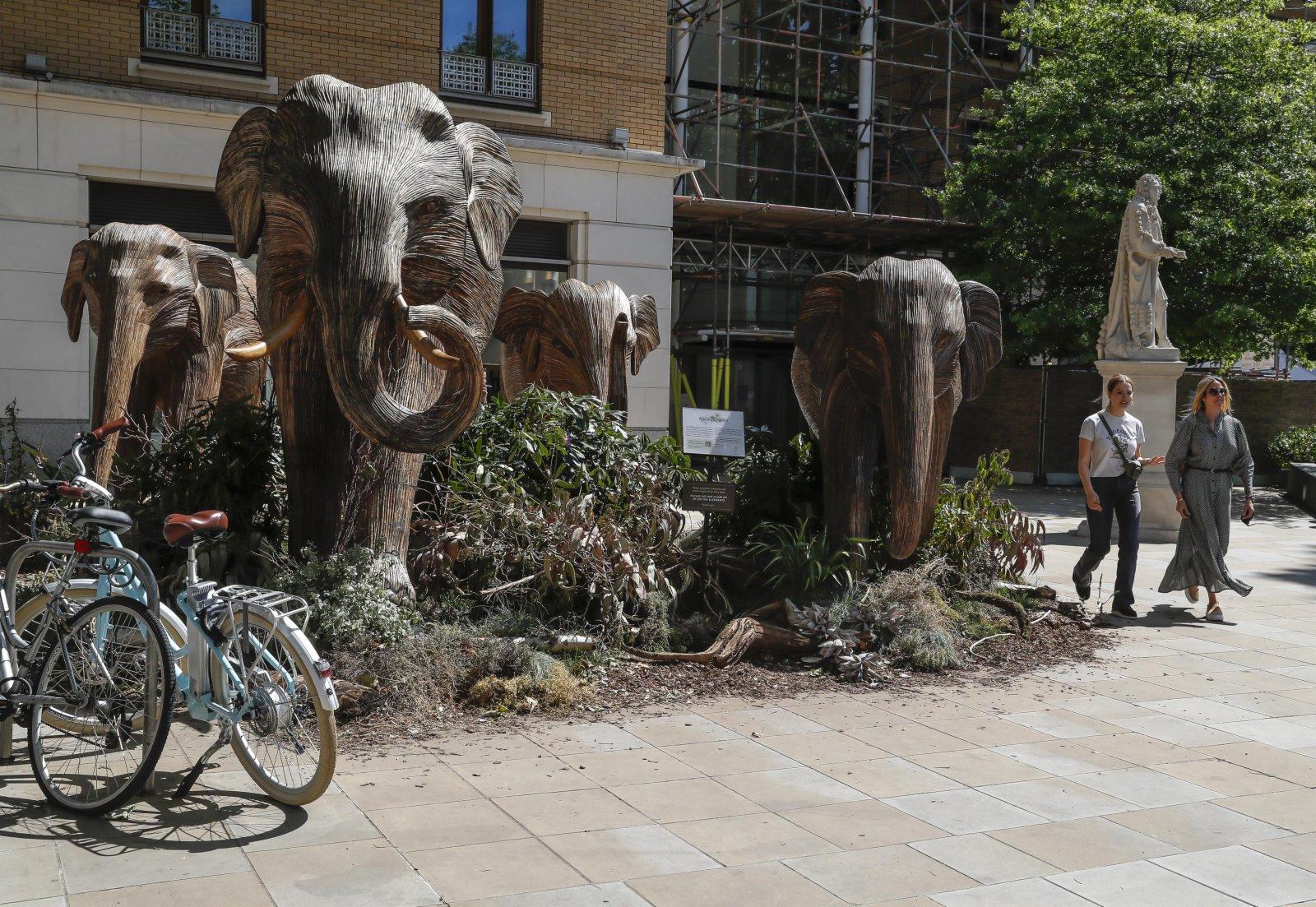 6月8日,行人從在英國倫敦切爾西街頭擺放的大象藝術品旁走過。(新華社)