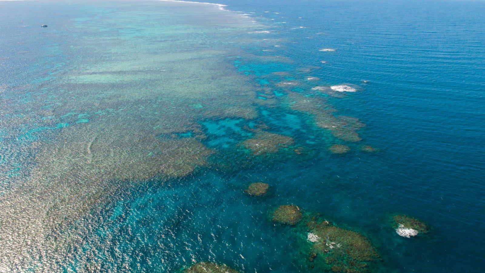這是6月2日在澳大利亞昆士蘭拍攝的大堡礁(無人機照片)。(新華社)