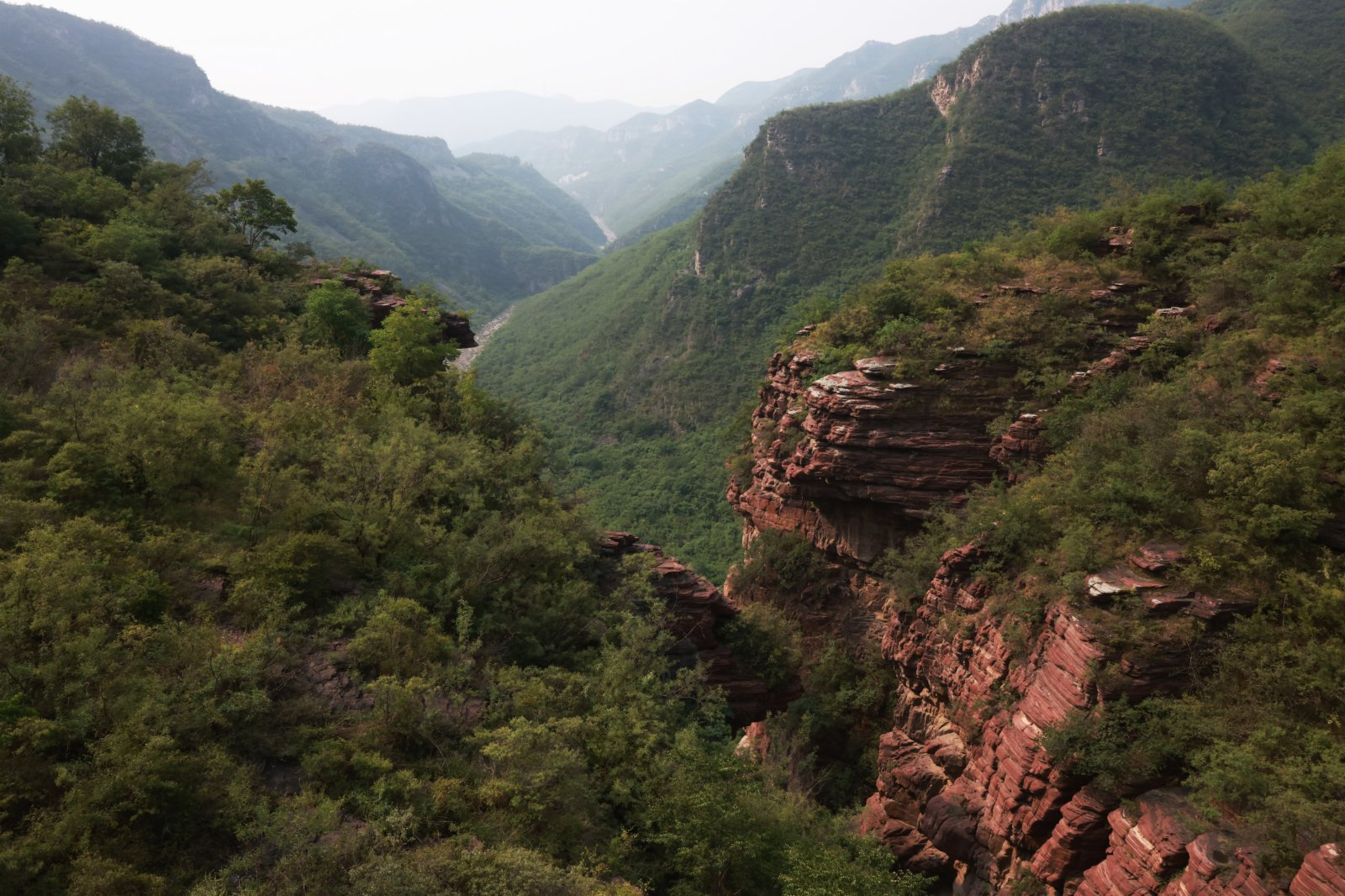 這是6月10日在雲台山紅石峽景區拍攝的峽谷景觀。(新華社)