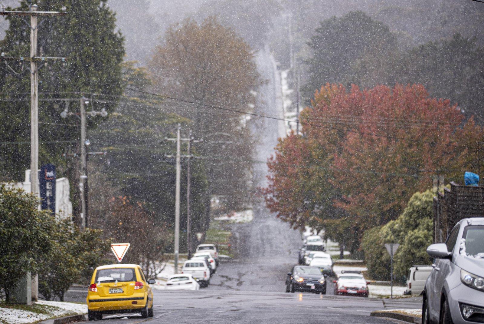 6月10日,澳大利亞新南威爾士州藍山地區迎來初雪。(新華社)