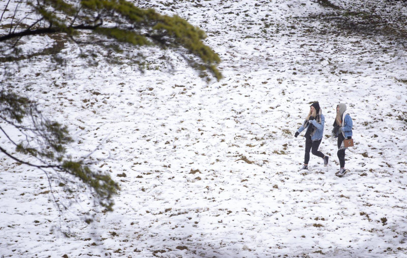 6月10日,人們在澳大利亞新南威爾士州藍山地區冒雪出行。(新華社)