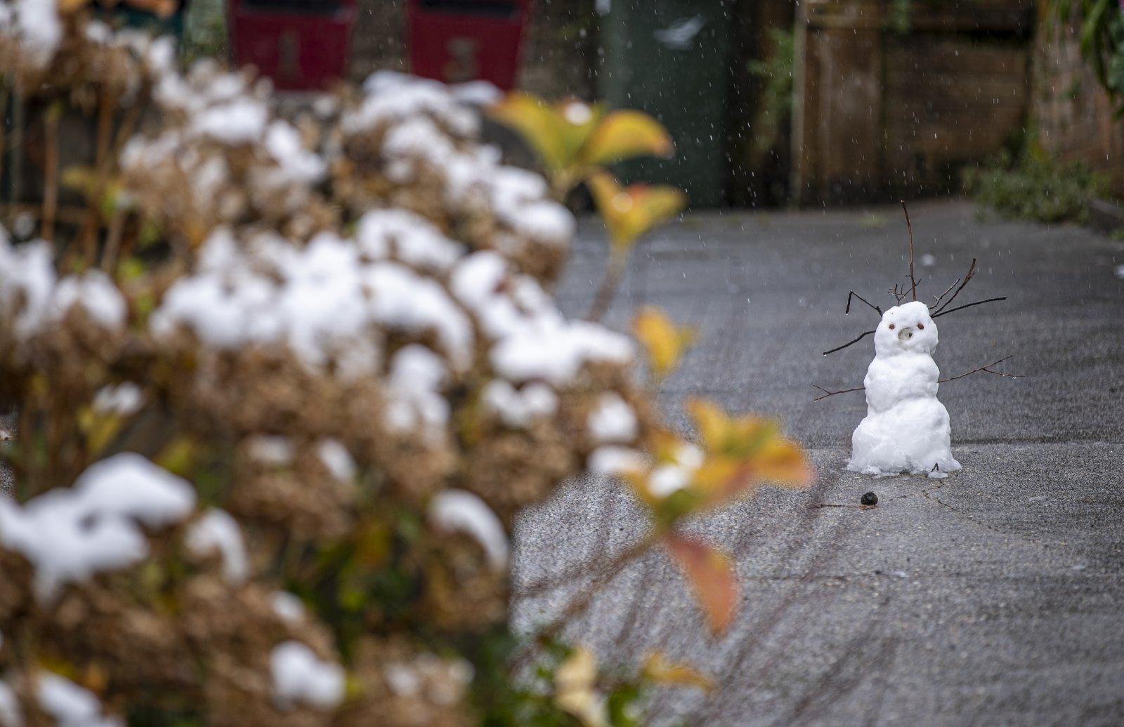 這是6月10日在澳大利亞新南威爾士州藍山地區拍攝的雪人。(新華社)