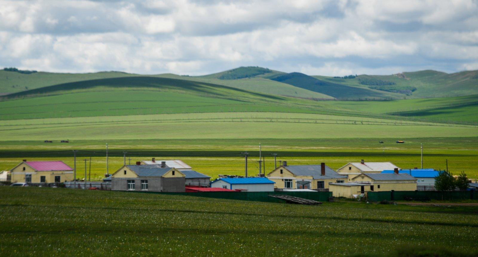 這是內蒙古呼倫貝爾332國道旁的森林草原風光(6月10日攝)。(新華社)
