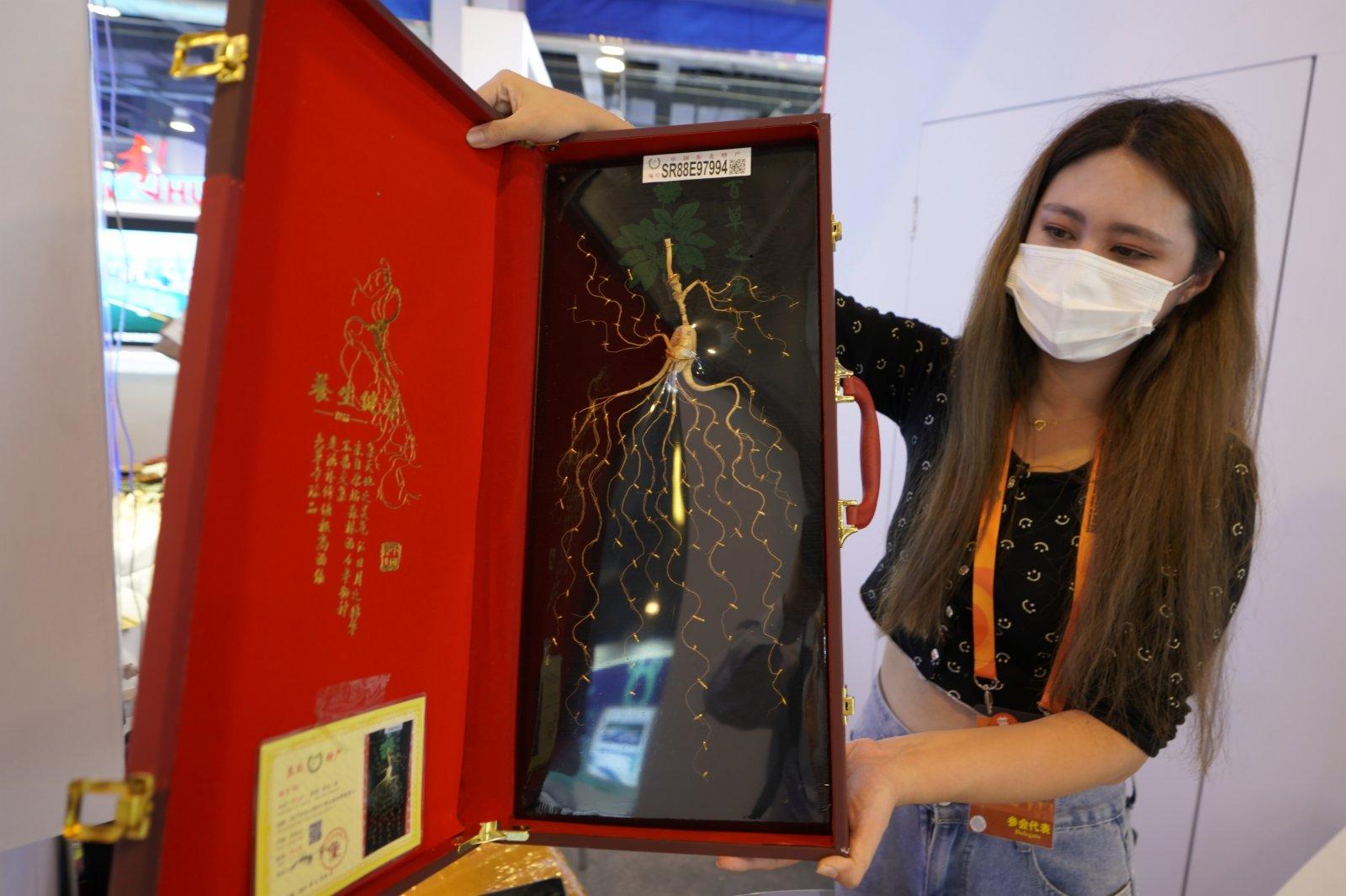 9月5日,工作人員在服貿會國家會議中心展區遼寧展位展示人參。(新華社)